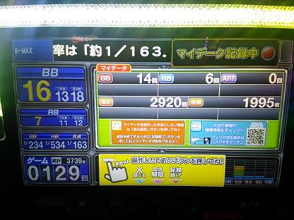 DSC_1627.JPG