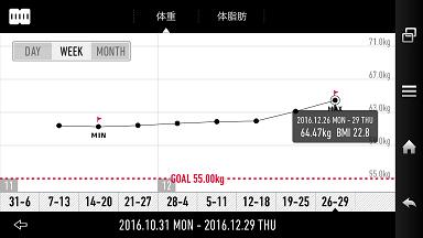 年末グラフ1.png