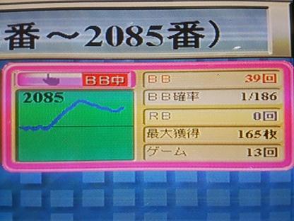 DSC_1595.JPG